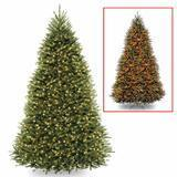 National Tree Company 9' Foot Dunhill Fir Tree with 900 Dual LED Lights
